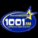 1001 FM-Logo
