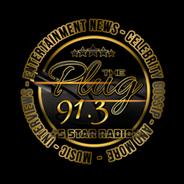 91.3 THE PLUG RADIO-Logo