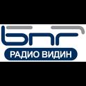 Radio Vidin-Logo