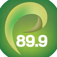 FM Profesional 89.9-Logo