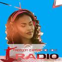 Freedom Experience Zone-Logo