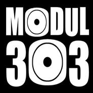 Modul303-Logo