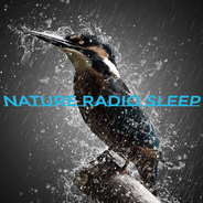 Nature Radio Sleep-Logo