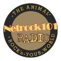 Netrock101-Logo
