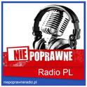 Niepoprawne Radio-Logo