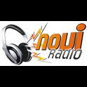 Novi Radio -Logo