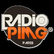 PIMG RADIO-Logo