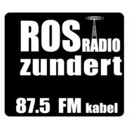 ROS Radio-Logo