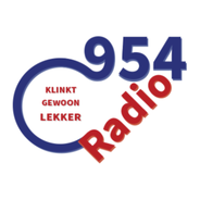 Radio 954-Logo