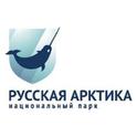 Radio Arctica-Logo