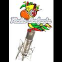 Radio Barbagia-Logo