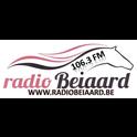 Family Radio Beiaard-Logo
