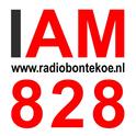 Radio Bontekoe-Logo