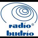 Radio Budrio -Logo