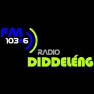 Radio Diddeleng 103.6 FM-Logo