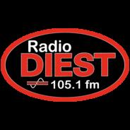 Radio Diest 105.1 FM-Logo