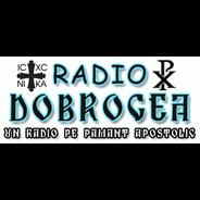 Radio Dobrogea-Logo