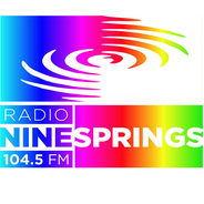 Radio Ninesprings-Logo