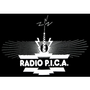 Radio Pica 96.6-Logo