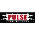 Radio Pulse 90 FM-Logo