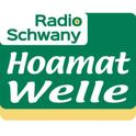 Radio Schwany-Logo