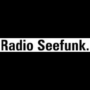 Radio Seefunk-Logo