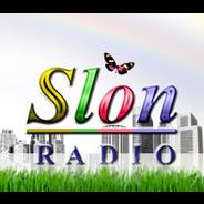 RTV Slon-Logo