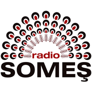 Radio Some?-Logo