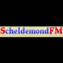 Scheldemond FM-Logo