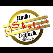 Skala Radio -Logo