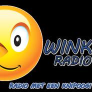 Wink Radio-Logo
