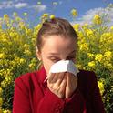 Pollenallergien sind vor allem im Frühling sehr lästig