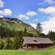 Aufgewachsen im idyllischen Oberbayern, standen die drei Musiker plötzlich auf den großen Bühnen der Welt