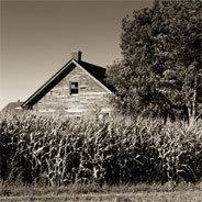Die kleinen Höfe haben es immer schwerer.
