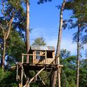 Ein großer Streit führt zur Flucht in ein Baumhaus