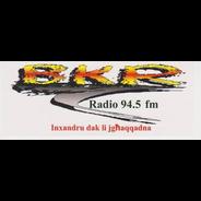 BKR Radio-Logo