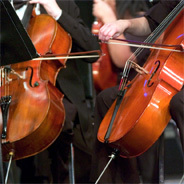 Der Cellist Julian Steckel spielt das Violincellokonzert in C-Dur von Haydn