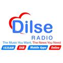 Dilse Radio-Logo