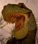 Leider fühlt sich Henrys Dinosaurier gar nicht wohl in unserer modernen Welt