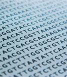 Mit einer DNA-Sequenz ist so einiges möglich