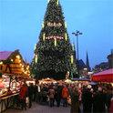 Bäume sind vielfältige Bedeutungsträger, nicht nur in der Weihnachtszeit