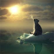 Aki der kleine Eisbär und Birka