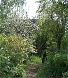 Im Garten ihrer verstorbenen Tante sucht Mariola nach Hinterlassenschaften