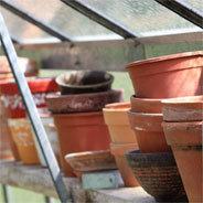 Die Blumentöpfe in Herrn Pompmöllers Gewächshaus sind leer, denn hier wachsen keine Pflanzen