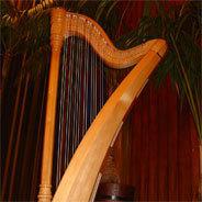 Die Harfe und ihre neuen Musikfelder