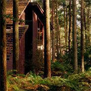 Julius lebt zurückgezogen im Wald