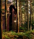 Inspiriert sind ihre Stücke vom Wald.