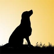 Ein Paarhund kann für eine starke Bindung sorgen