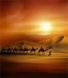 Pyramiden - das Wahrzeichen Ägyptens