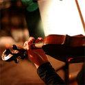 Das Viano String Quartett betritt die internationale Bühne.